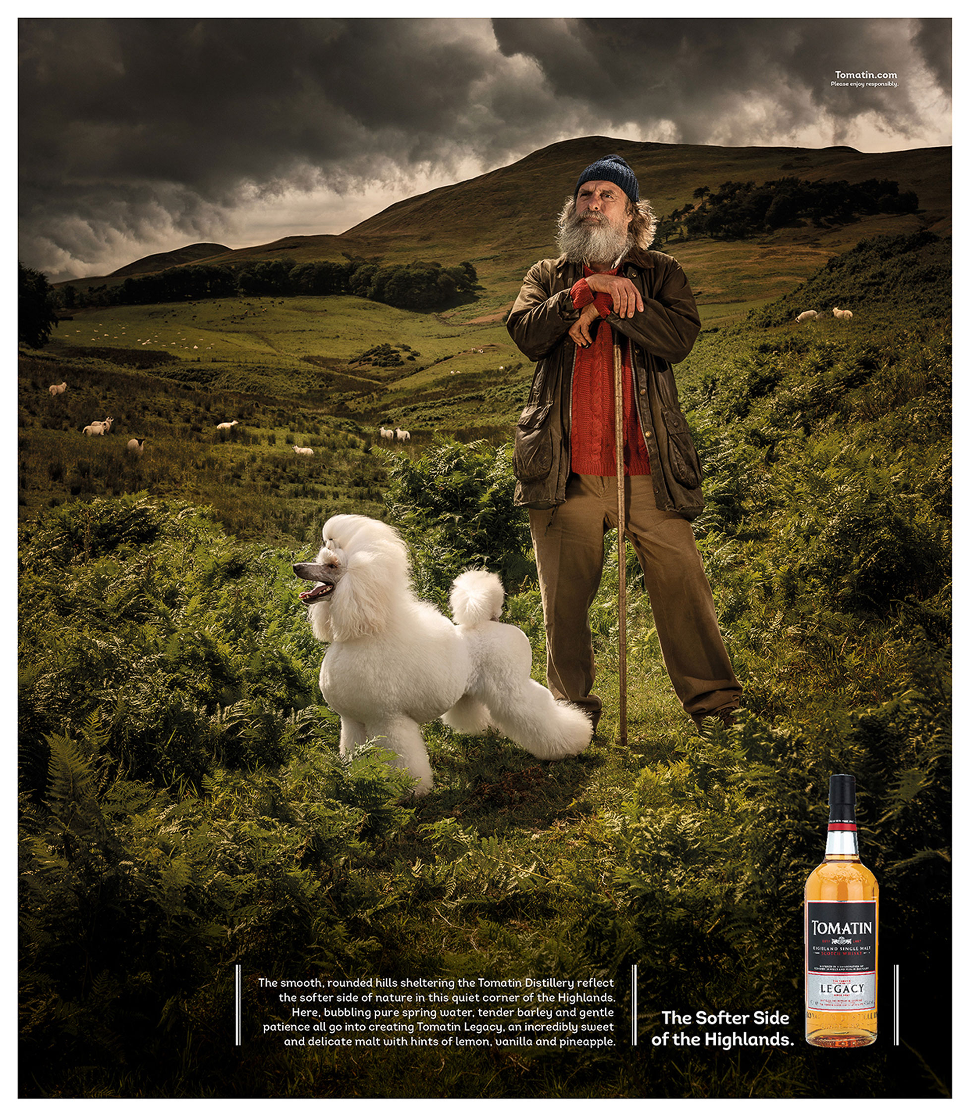 Tomatin Whisky Campaign with shepherd and poodle dog